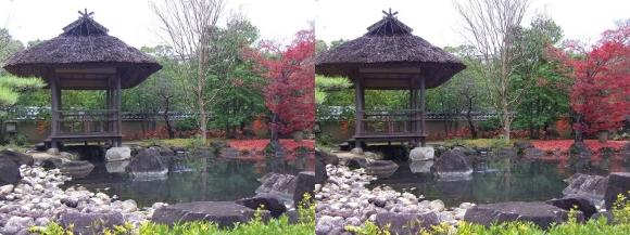 姫路城西屋敷公園 好古園 築山池泉の庭~竹の庭①(交差法)