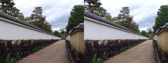 姫路城西屋敷公園 好古園 築地塀(平行法)