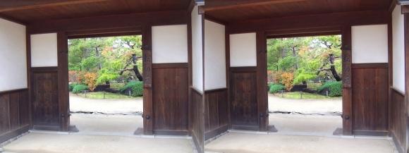 姫路城西屋敷公園 好古園 流れの平庭~夏木の庭~松の庭~花の庭⑩(交差法)