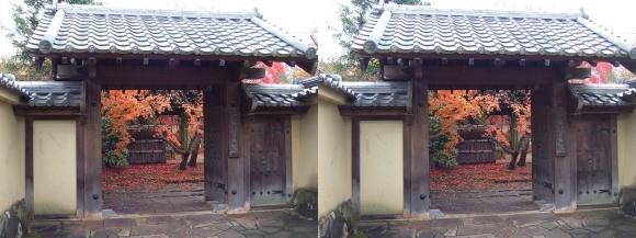姫路城西屋敷公園 好古園 流れの平庭~夏木の庭~松の庭~花の庭⑨(平行法)