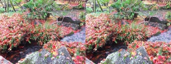 姫路城西屋敷公園 好古園 流れの平庭~夏木の庭~松の庭~花の庭⑧(平行法)