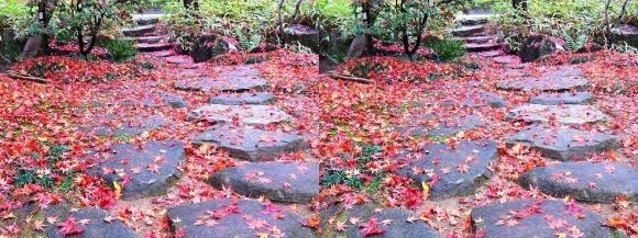 姫路城西屋敷公園 好古園 流れの平庭~夏木の庭~松の庭~花の庭⑥(平行法)