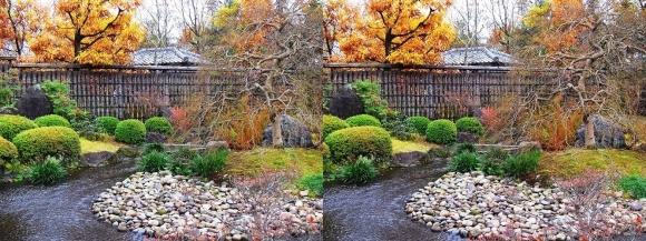 姫路城西屋敷公園 好古園 流れの平庭~夏木の庭~松の庭~花の庭③(交差法)