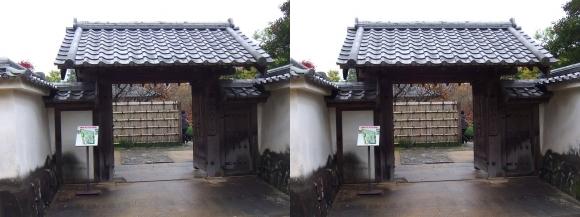 姫路城西屋敷公園 好古園 流れの平庭~夏木の庭~松の庭~花の庭①(交差法)