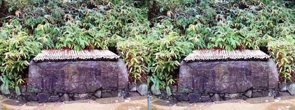 姫路城西屋敷公園 好古園 苗の庭⑥(平行法)
