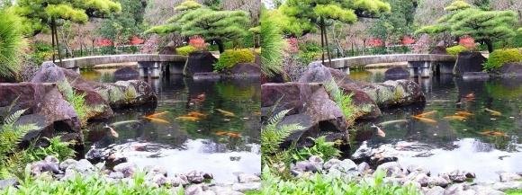 姫路城西屋敷公園 好古園 御屋敷の庭⑭(平行法)