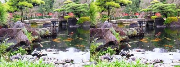 姫路城西屋敷公園 好古園 御屋敷の庭⑭(交差法)