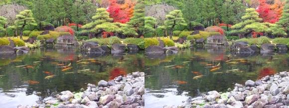 姫路城西屋敷公園 好古園 御屋敷の庭⑫(平行法)