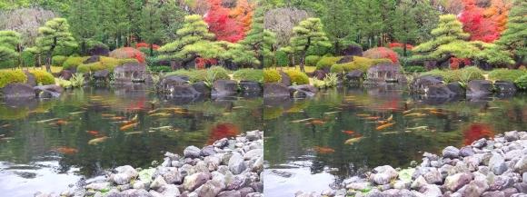 姫路城西屋敷公園 好古園 御屋敷の庭⑫(交差法)