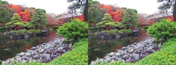 姫路城西屋敷公園 好古園 御屋敷の庭⑪(平行法)