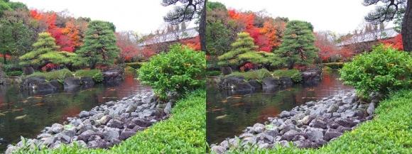 姫路城西屋敷公園 好古園 御屋敷の庭⑪(交差法)