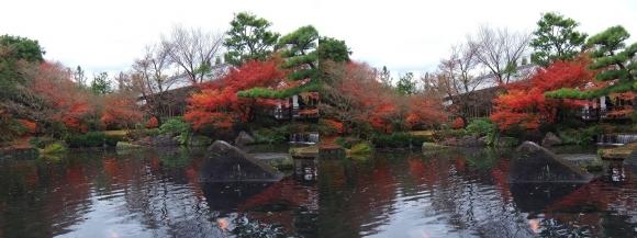 姫路城西屋敷公園 好古園 御屋敷の庭⑩(交差法)