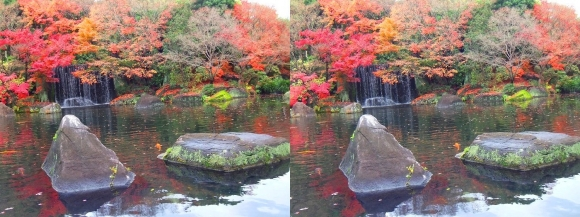 姫路城西屋敷公園 好古園 御屋敷の庭⑨(平行法)