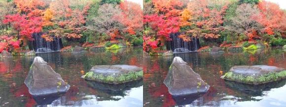 姫路城西屋敷公園 好古園 御屋敷の庭⑨(交差法)