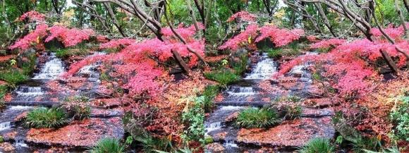 姫路城西屋敷公園 好古園 御屋敷の庭⑦(平行法)