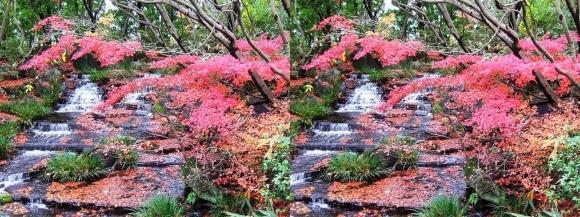 姫路城西屋敷公園 好古園 御屋敷の庭⑦(交差法)