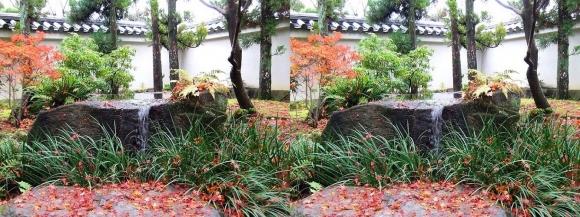 姫路城西屋敷公園 好古園 御屋敷の庭②(平行法)