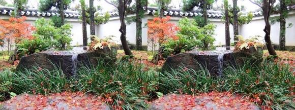 姫路城西屋敷公園 好古園 御屋敷の庭②(交差法)