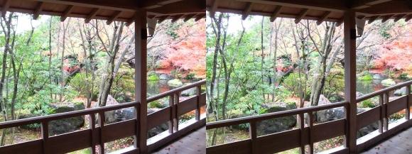 姫路城西屋敷公園 好古園 御屋敷の庭 渡り廊下(平行法)