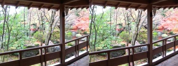 姫路城西屋敷公園 好古園 御屋敷の庭 渡り廊下(交差法)