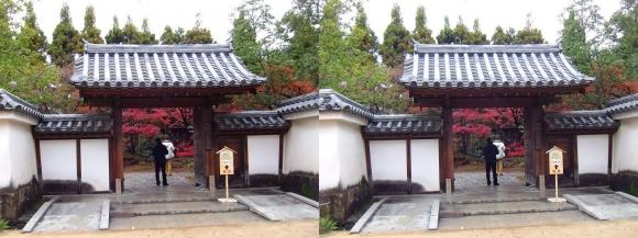姫路城西屋敷公園 好古園 御屋敷の庭 屋敷門(平行法)