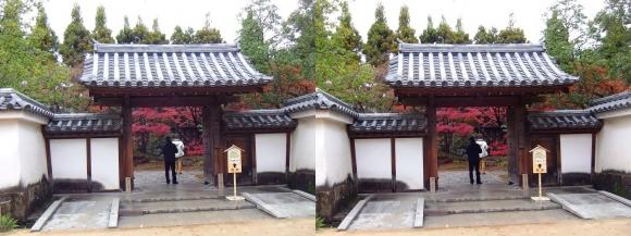 姫路城西屋敷公園 好古園 御屋敷の庭 屋敷門(交差法)