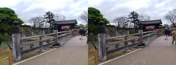 姫路城桜門橋・大手門(交差法)