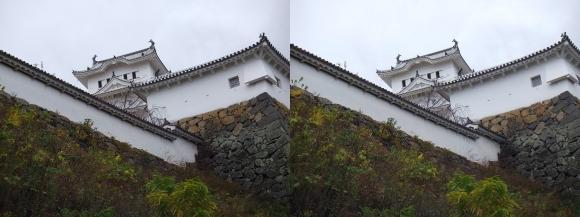 姫路城太鼓櫓・大天守(平行法)