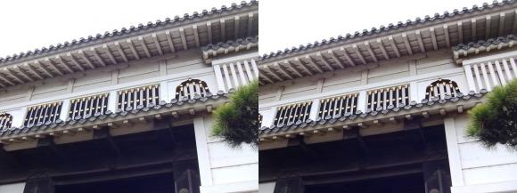 姫路城菱の門②(交差法)