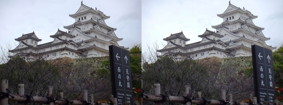 姫路城菱の門付近からの天守閣(平行法)