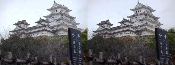 姫路城菱の門付近からの天守閣(交差法)