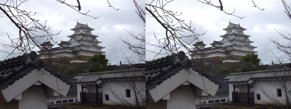 姫路城西の丸カの櫓北方土塀からの天守閣③(平行法)