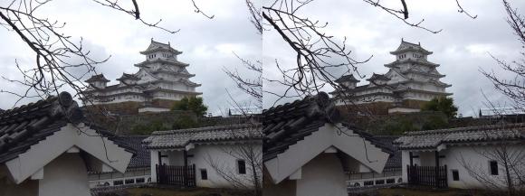 姫路城西の丸カの櫓北方土塀からの天守閣③(交差法)