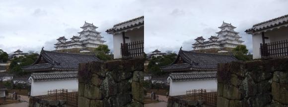 姫路城西の丸カの櫓北方土塀からの天守閣②(交差法)