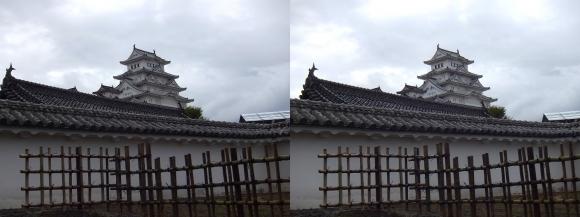 姫路城西の丸カの櫓北方土塀からの天守閣①(平行法)