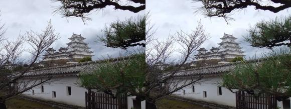 姫路城西の丸高台からの天守閣⑥(平行法)