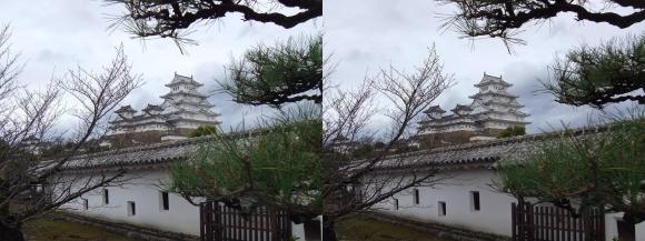 姫路城西の丸高台からの天守閣⑥(交差法)