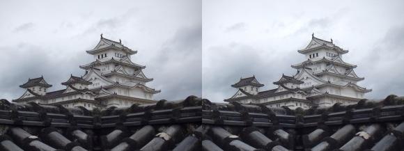 姫路城西の丸高台からの天守閣⑤(平行法)