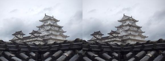 姫路城西の丸高台からの天守閣⑤(交差法)