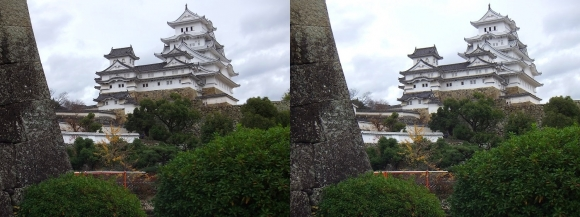 姫路城西の丸高台からの天守閣④(平行法)