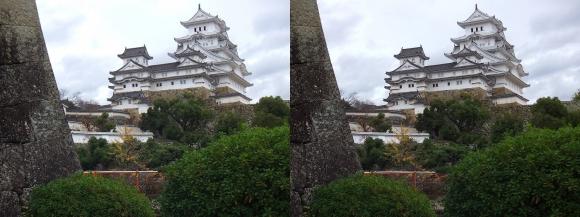 姫路城西の丸高台からの天守閣④(交差法)
