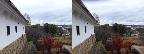 姫路城西の丸渡櫓からの天守閣③(交差法)