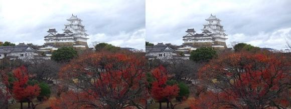 姫路城西の丸渡櫓からの天守閣②(交差法)