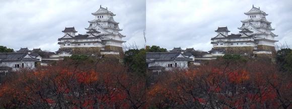 姫路城西の丸渡櫓からの天守閣①(平行法)