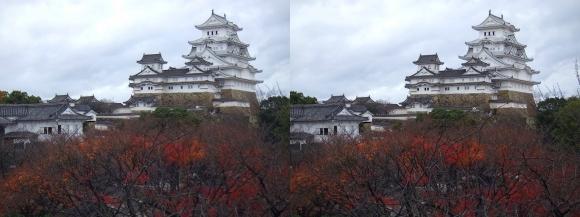 姫路城西の丸渡櫓からの天守閣①(交差法)