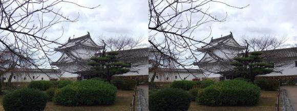 姫路城西の丸ワの櫓(交差法)