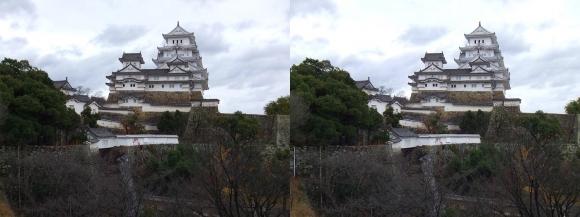 姫路城西の丸高台からの天守閣③(平行法)