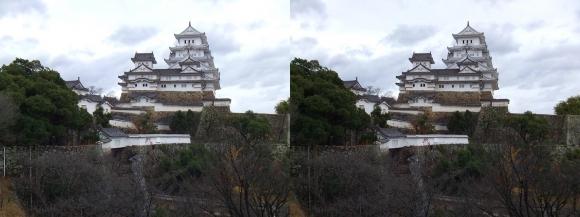 姫路城西の丸高台からの天守閣③(交差法)