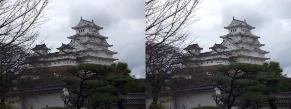 姫路城西の丸高台からの天守閣②(平行法)