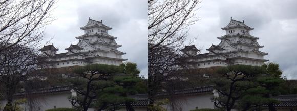 姫路城西の丸高台からの天守閣②(交差法)